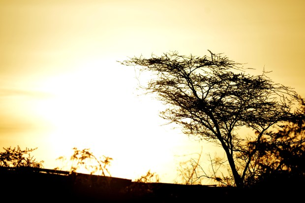 Lodwar 1