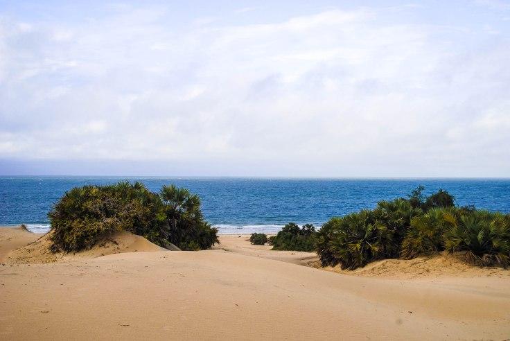 Sand Dunes-0373